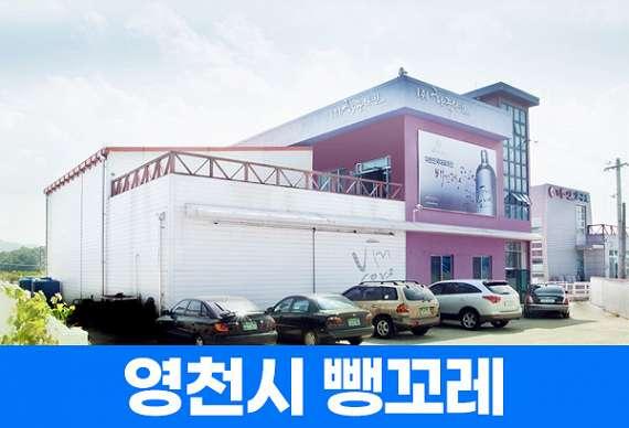 [하이스토리 경북] 영천 뱅꼬레